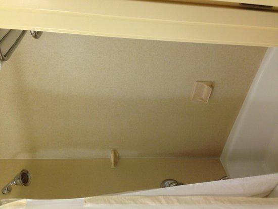 Hilton Garden Inn Colorado Springs Airport: Clean hairless shower