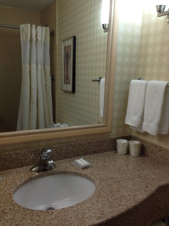 Hilton Garden Inn Colorado Springs Airport: Sink