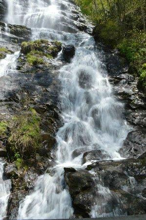 Amicalola Falls State Park : waterfall