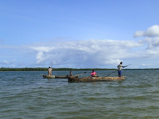 """Mida Creek: View from our 200 metre canoe """"trip"""""""