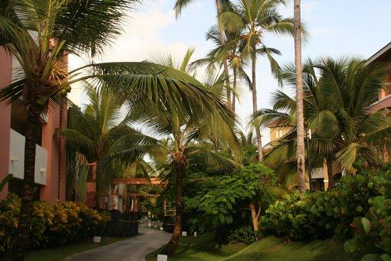 Secrets Royal Beach Punta Cana: Secrets Royal Beach Preferred Suites