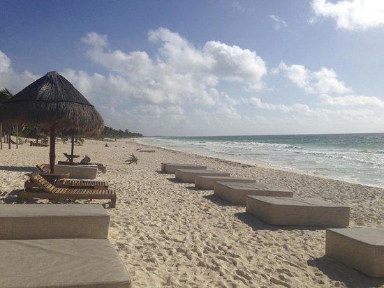 Rosa del Viento: Beach