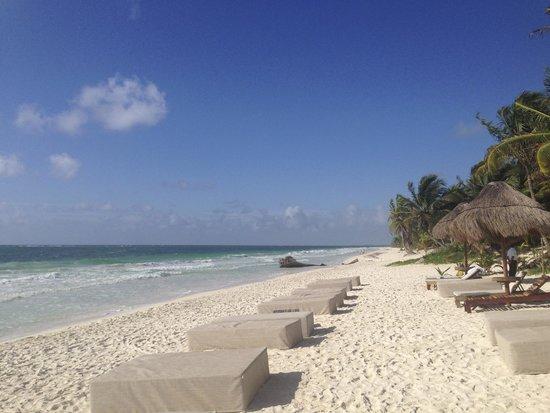 Rosa del Viento : Beach