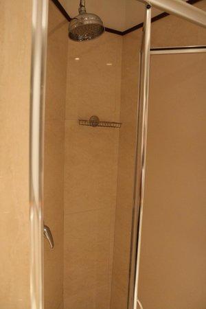 Al Colonnato di San Pietro Bed and Breakfast: Shower