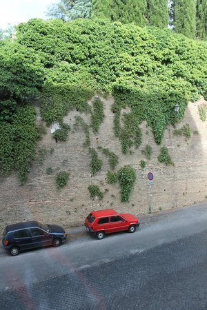 Al Colonnato di San Pietro Bed and Breakfast: Beautiful vined wall outside our room