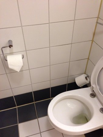 Copthorne Hotel Slough - Windsor: 1980s tiles, broken loo roll holder - period bathroom?