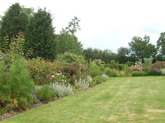 Hall Farm B&B: flower border