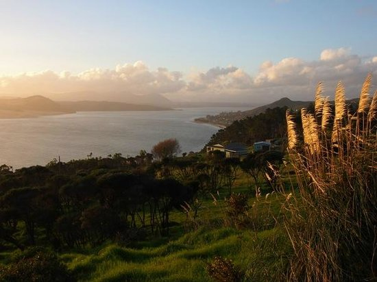 Footprints Waipoua : The twilight tour stops to look over the view of the Hokianga Harbour