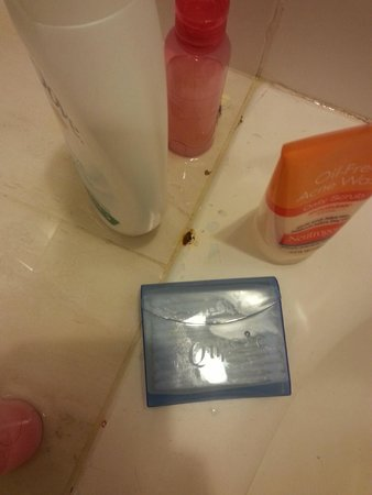 Viva Wyndham Dominicus Beach: rust spots around the tub