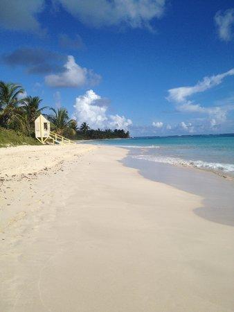 Playa Flamenco: Flamenco Beach