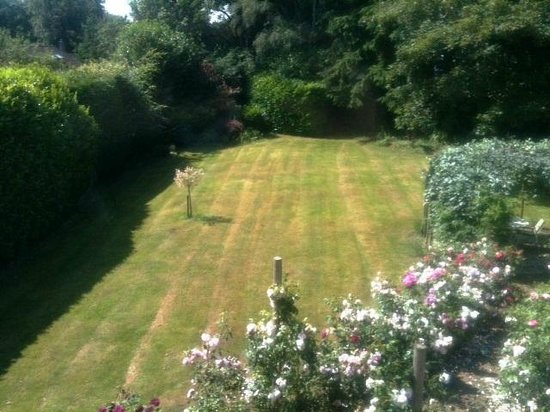 Dawyk Beech: its a garden, full stop