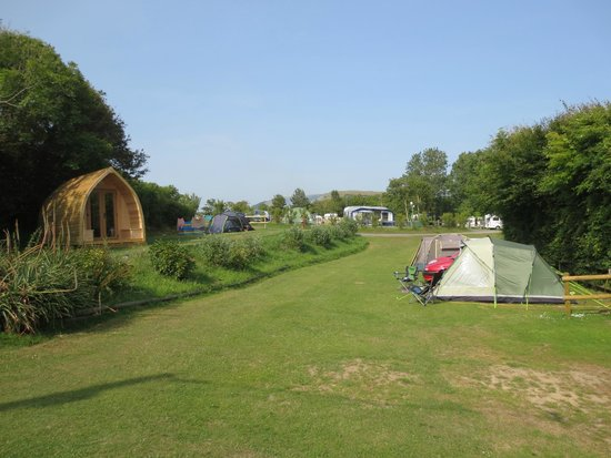 Golden Cap Holiday Park: The campsite - a view of our tent opposite the pods
