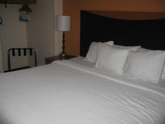 Fairfield Inn & Suites Minneapolis-St. Paul Airport: Bed