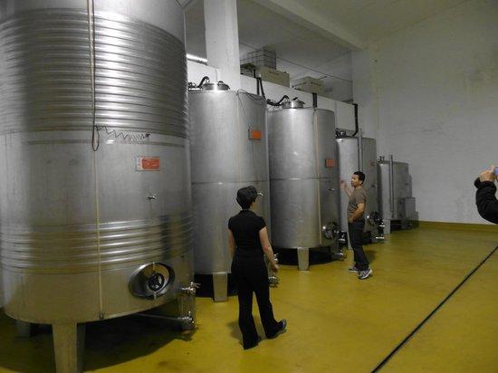 Arizia: Cider vats