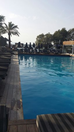 Balux Cafe: Pool