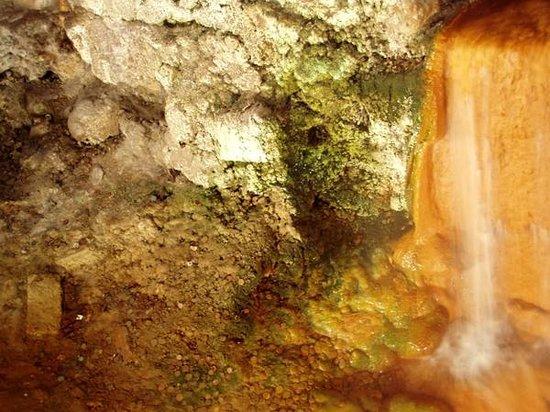 Roman Baths Museum : smaller mineral bath below main floor