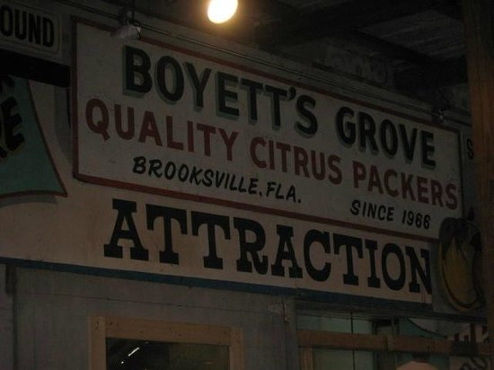 Boyett's Grove : Attraction