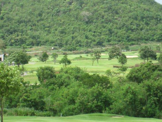 Banyan Golf Club : Fairways