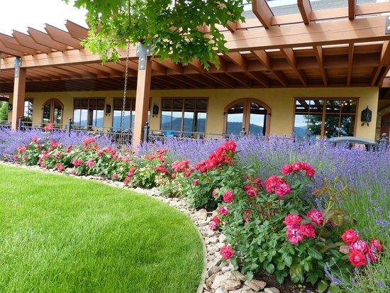 Hester Creek Estate Winery : Hester Creek Tasting Room