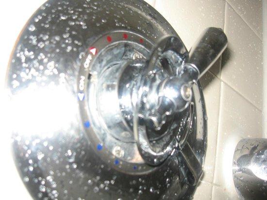 Ayres Hotel & Suites in Costa Mesa - Newport Beach : Shower water ring is loose