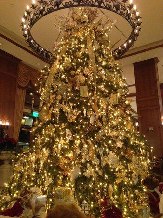The Inn on Biltmore Estate: Grand Lobby Tree