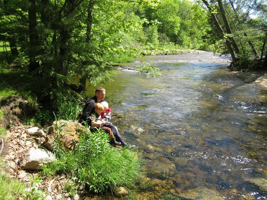 Remick Country Doctor Museum & Farm: Cooling off - Swift River by Remick Farm