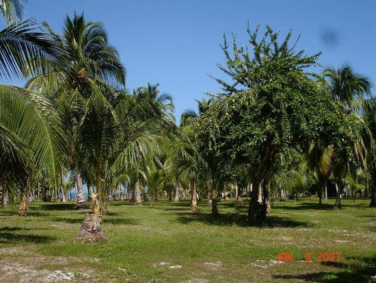 Punta Faro : Grounds