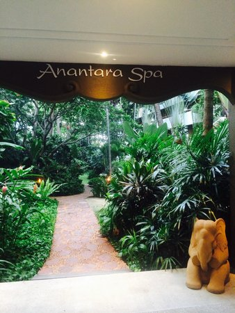 Anantara Riverside Bangkok Resort: Spa