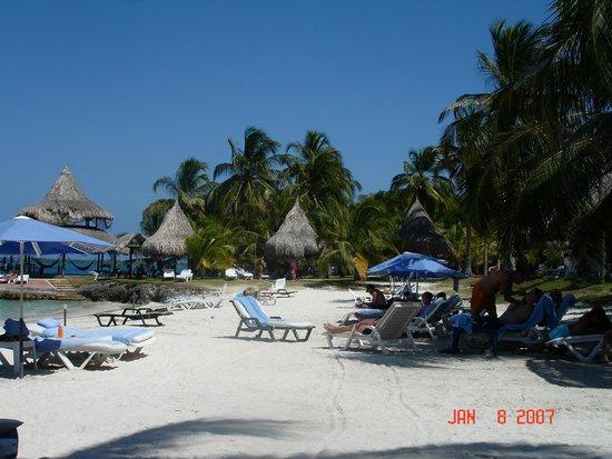 Punta Faro : Beach