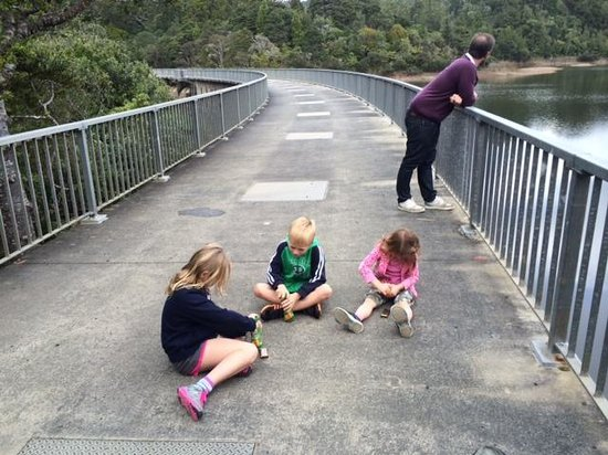 Waitakere Ranges : The dam and lunch