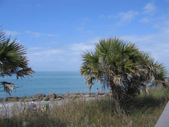 Caspersen Beach : Pretty Views