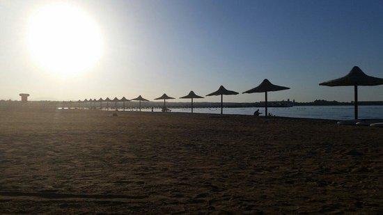 Stella Di Mare Beach Resort & Spa Makadi Bay: Beach afternoon