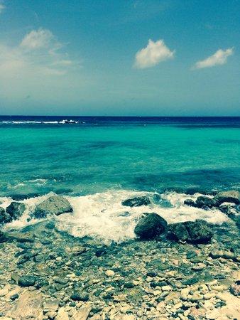 Curacao Marriott Beach Resort & Emerald Casino: Curaçao Marriott You'll Fall In Love