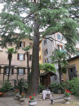 Hotel Centrale: garden