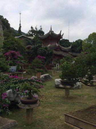 Huangguoshu Falls: National Park Bonsai Garden Entrance to Falls