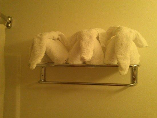 BEST WESTERN Inn at Sundance: Towels/wash clothes