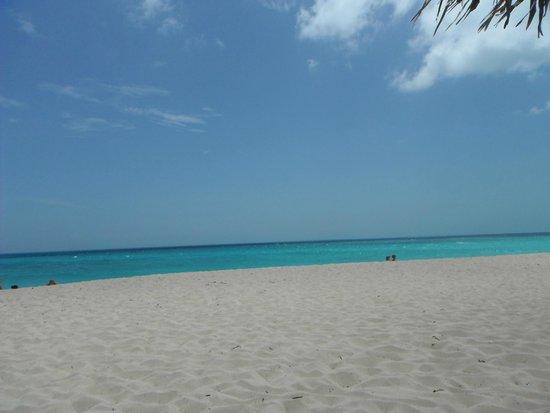 Melia Cayo Santa Maria: Beach in front of the resort
