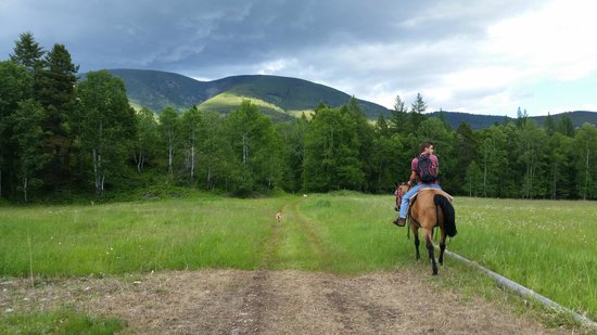 Bull River Guest Ranch: Out on the 500+ acre property