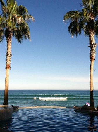 Cabo Surf Hotel: Garden Pool