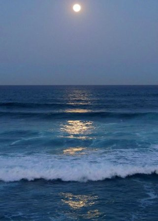 Cabo Surf Hotel: Shore Villa View - Full Moon