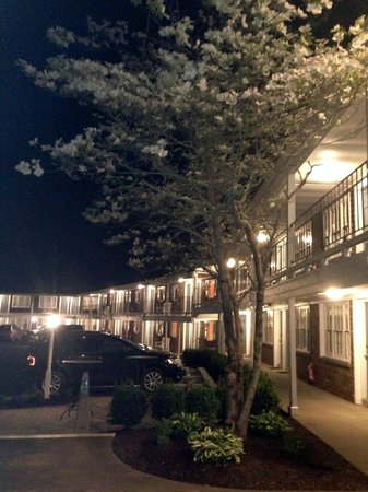 Craigville Beach Inn: Exterior at Night