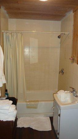 Windy Hill Resort: Cabin 16 shower