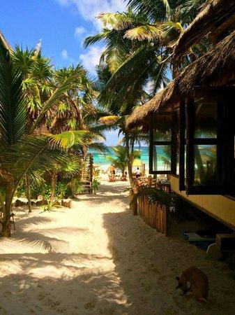 Ahau Tulum: idea of paradise