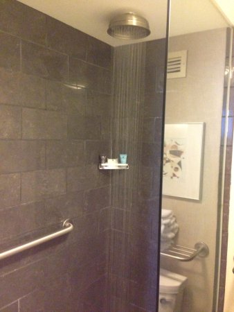 Crowne Plaza Hotel: Shower