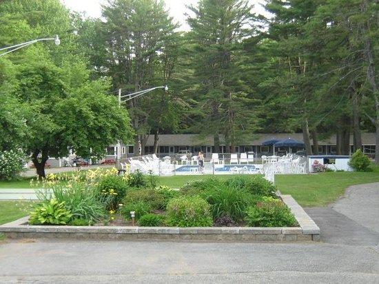 Elmwood Motor Court: aperçu des motels