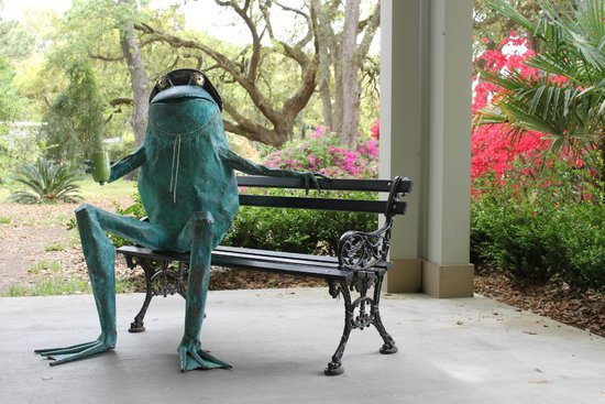 Charleston Tea Plantation : Take a photo with the tea frog!