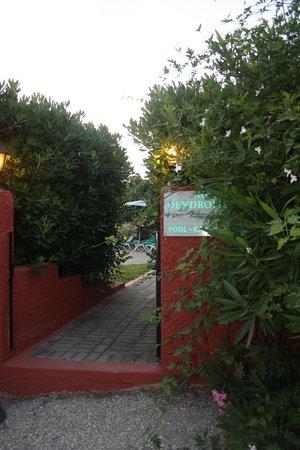 Hotel Dendrolivano: Entrata