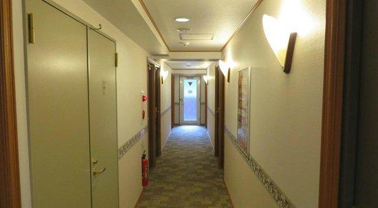 Toyoko Inn Tameike Sanno Eki Kantei Minami: Toyoko Inn - Tameike Sanno corridor on 5th floor