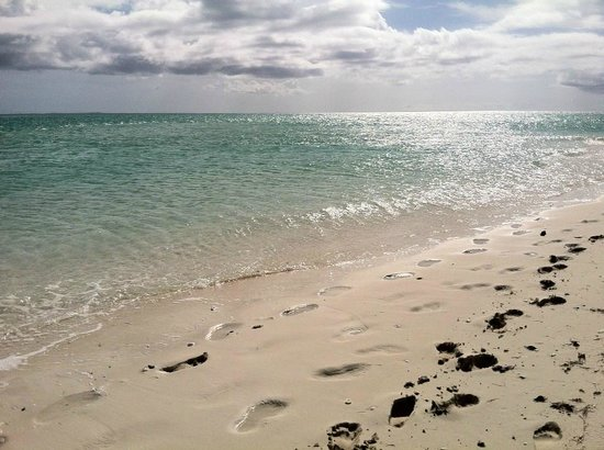 Beaches Turks and Caicos Resort Villages and Spa : Beach during excursion