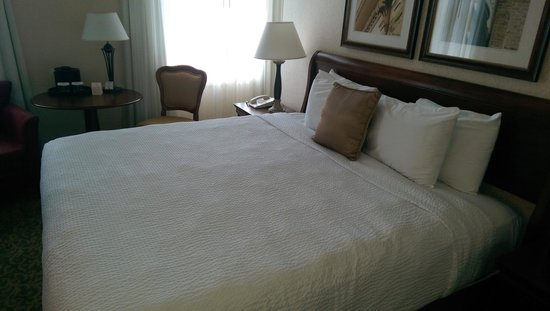 Stonewall Jackson Hotel and Conference Center: King Room